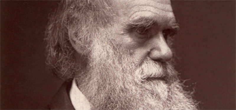 charles darwin in old age