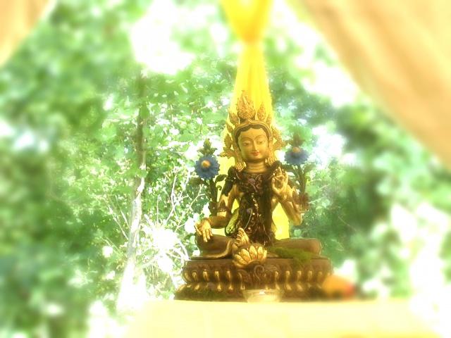 Buddhafield: Tara