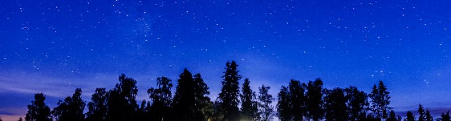 Dharmagiri night sky