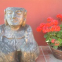 The Buddha Amongst The Geraniums