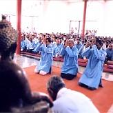Saluting The Shrine