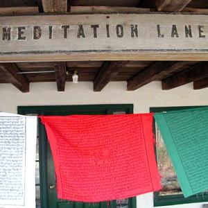 Meditation Lane