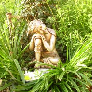 Summer Buddha