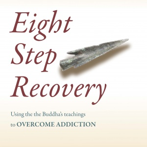 Eight Step Recovery Sobriety Hangout