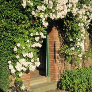 Rivendell Front Door