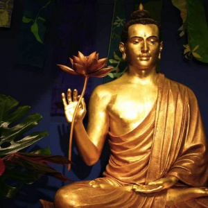 Lotus Hall Rupa