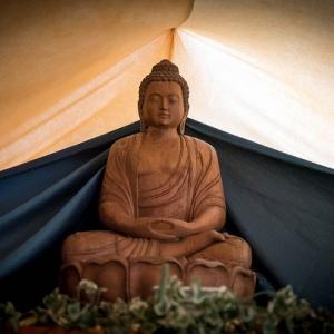 Buddha at Buddhafield