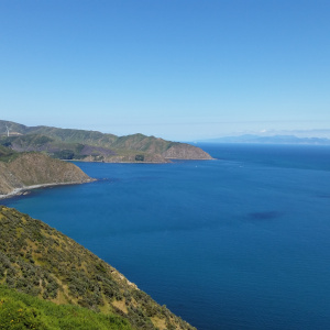 Makara hills and sea