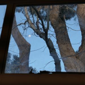 Moon through the Centre windows