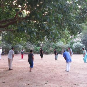 Chikun under Bodhi Tree