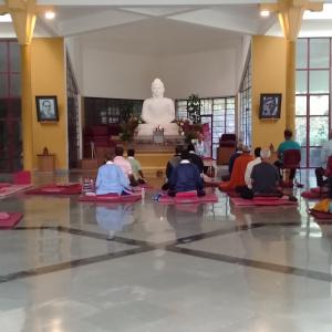 A morning meditation in Main Shrine