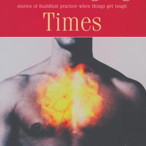 Vishvapani ed. Challenging Times