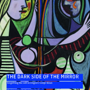 The Dark Side of the Mirror by David Brazier