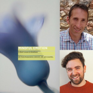 Mindful Emotion by Drs Paramabandhu Groves and Jed Shamel