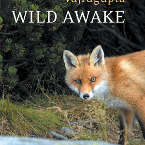 Wild Awake by Vajragupta, coming soon