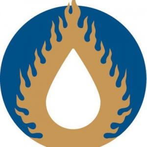 FutureDharma logo