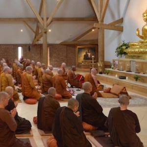Monks and nuns in the Amaravati shrine hall