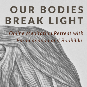 Our Bodies Break Light