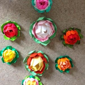 lotuses for shrine