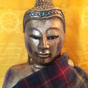 Sangha Ceilidh - Feb 3!