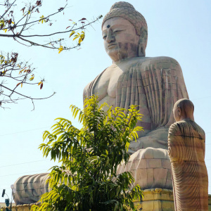 The Giant Buddha 1