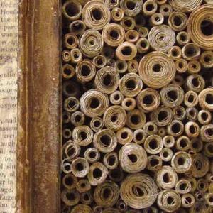 Alexandria library scrolls