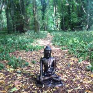 The Buddha of the Woods