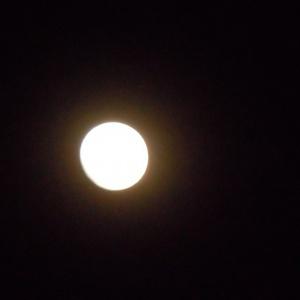 Guhyaloka, une nuit de pleine lune