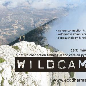 Wildcamp poster