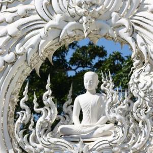 Beauty as a Gateway to Wisdom