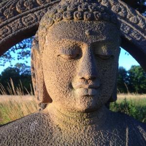 Buddha under ek