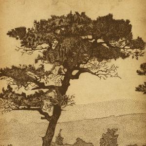 Refuge Tree