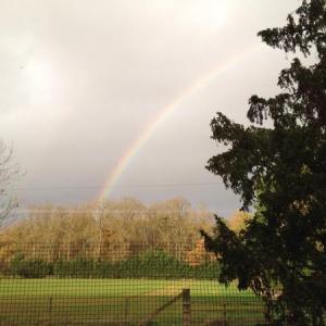 Adhisthana Rainbow