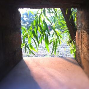 Through the nook