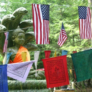 Buddha with flags © Derek Goodwin