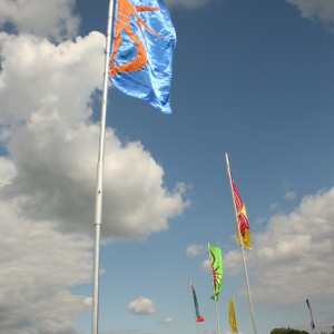 flags in sunshine