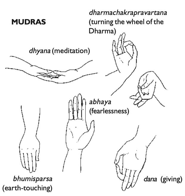line drawings of mudras